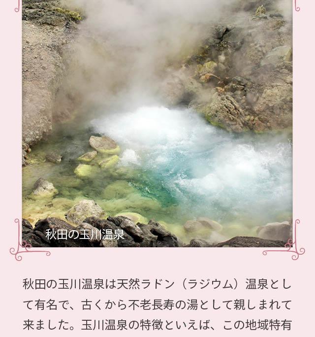 シャンフルールラジウム温泉効果SP3